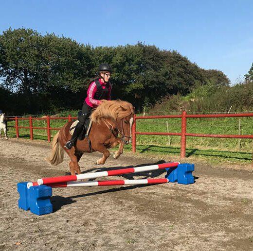 hest2